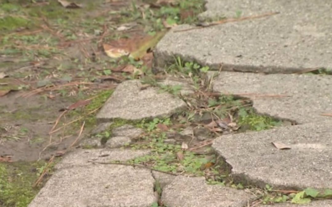 GUIDE TO RESTORING YOUR CONCRETE DRIVEWAY
