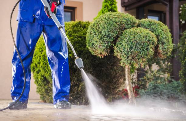 Top Tips: Clean Your Driveway With This Effective Tips