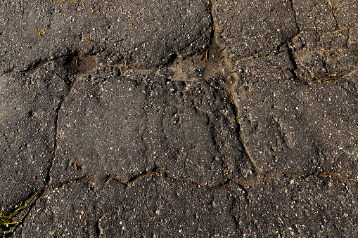 Concrete Driveways: Repair or Replace (Complete Guide)